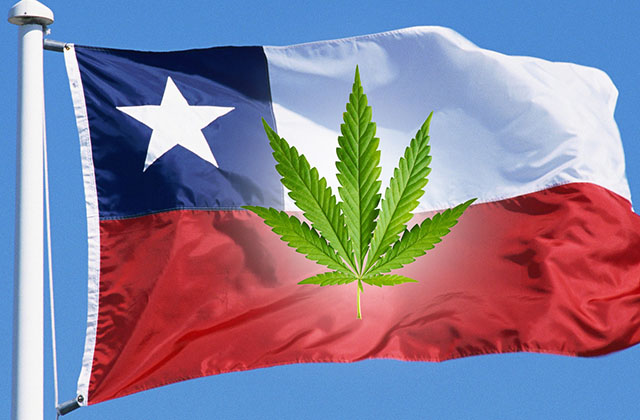 Chile & Weed