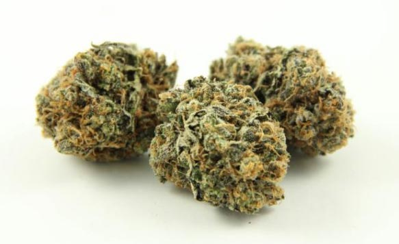 Example of ideal nug appearance and structure
