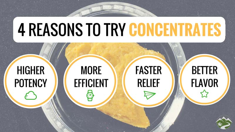 Why consume concentrates infographic