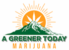 A Greener Today Marijuana