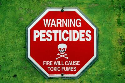 Could Cannabis Hyperemesis Syndrome Really Be Pesticide Poisoning?