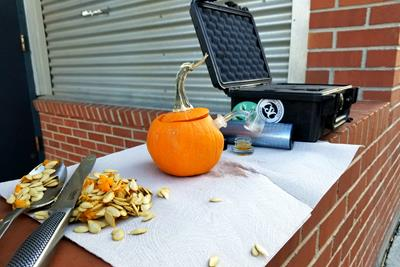 How to Make a Pumpkin Dab Rig in 3 Easy Steps