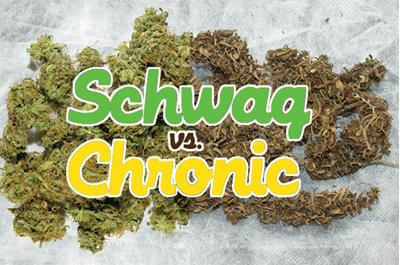 Be Smart & Know the Quality of Your Cannabis Flower