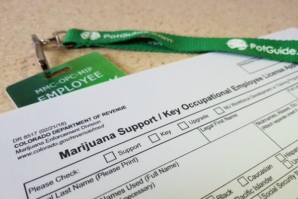 How To Get Your Colorado Med Badge And Start Working In Cannabis Potguide Com