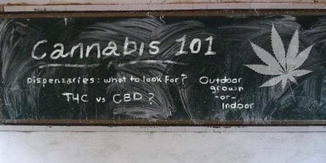 Cannabis 101 - Dispensaries | Toronto | PotGuide com