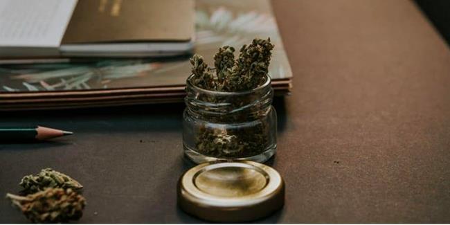 Cannabis Canada Investment Conference | Toronto | PotGuide com