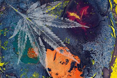 Does Cannabis Make You More Creative?