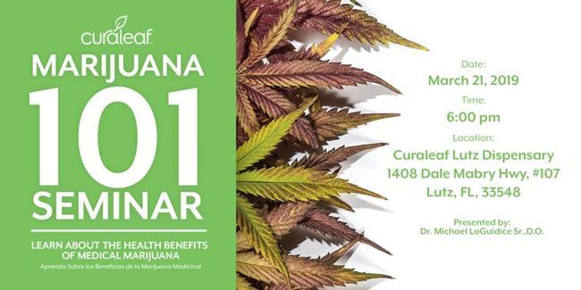 Medical Marijuana 101: Curaleaf | Lutz | PotGuide com