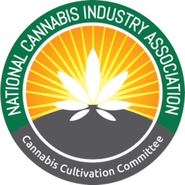 NCIA Committee Insights: Retail Cannabis During a Pandemic